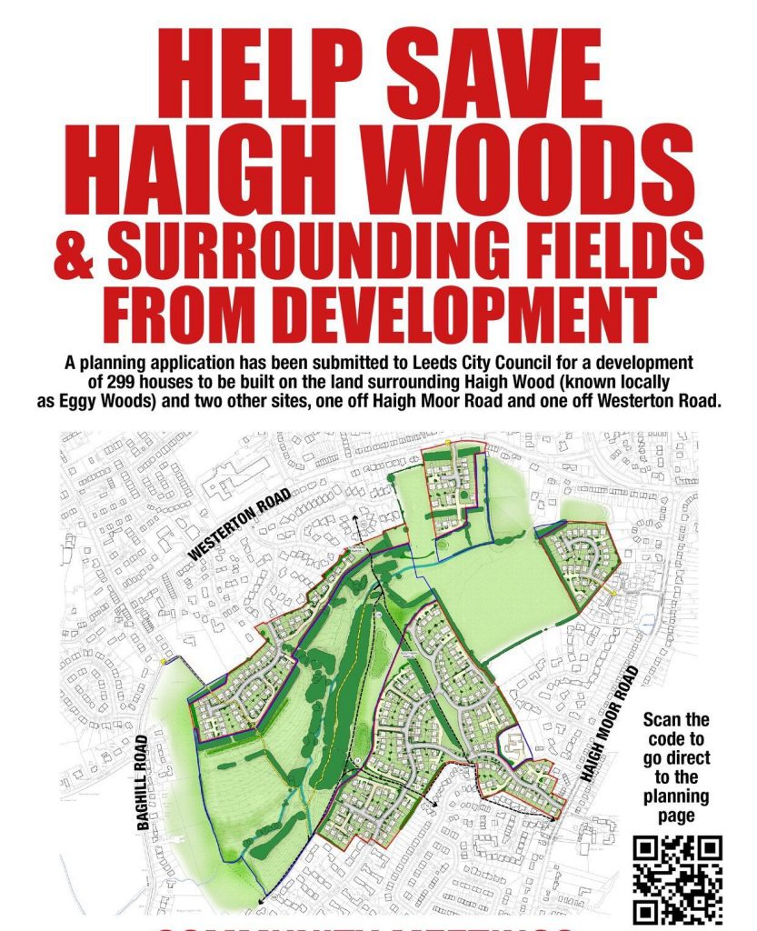 Save Haigh Woods